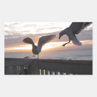 Seagulls on the deck at sunset. rectangular sticker