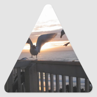 Seagulls on the deck at sunset. triangle sticker
