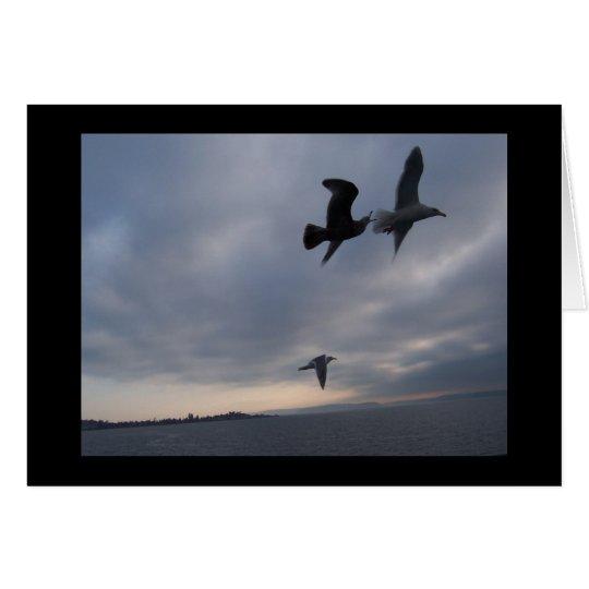 Seagulls over Puget Sound Sympathy Card