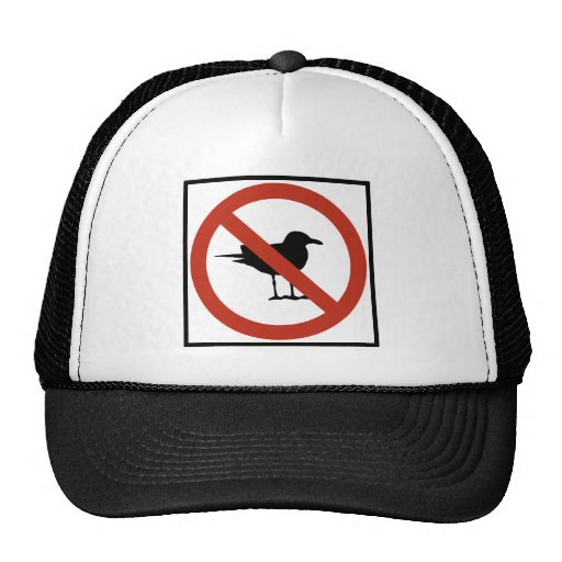 Seagulls Prohibited Mesh Hats
