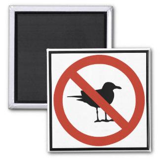Seagulls Prohibited Fridge Magnet