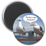 Seagulls speak French Magnets