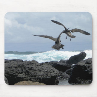 seagulls stupefies the waves mouse mat