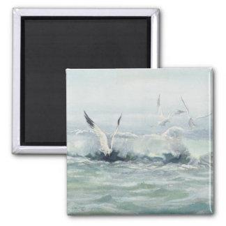 SEAGULLS & SURF by SHARON SHARPE Magnet