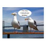 Seagulls talking post card