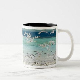 Seagulls Two-Tone Coffee Mug
