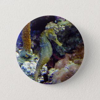 Seahorse 6 Cm Round Badge