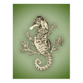 Seahorse and Coral on Green Background Postcard