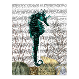 SeaHorse and Sea Urchins 2 Postcard