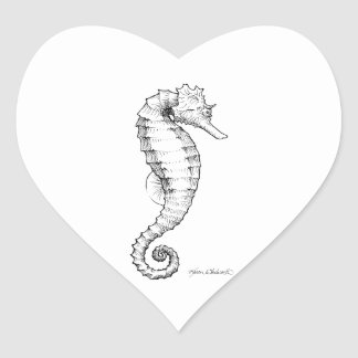 Seahorse Black and White Drawing Heart Sticker