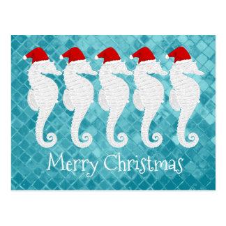 Seahorse Christmas Postcard