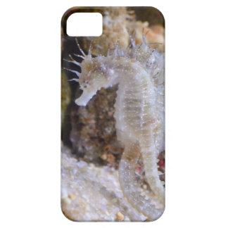 SEAHORSE CREATURE DESIGN - BEAUTIFUL BARELY THERE iPhone 5 CASE