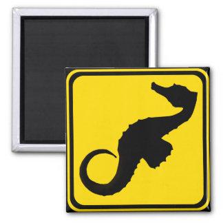 Seahorse Crossing ! Magnet