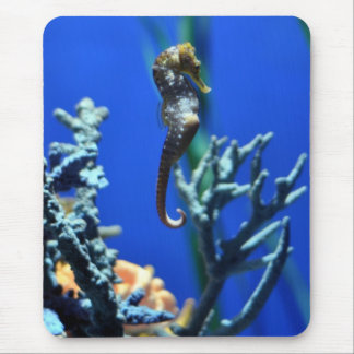 Seahorse Magic Mouse Mat