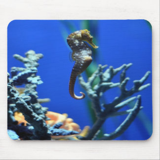 Seahorse Magic Mouse Pads