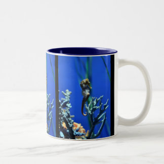 Seahorse Magic Two-Tone Coffee Mug