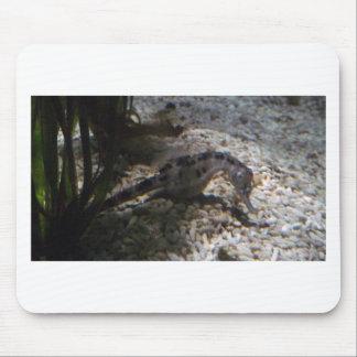 seahorse mouse mat