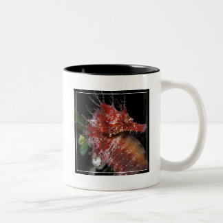 Seahorse | Pony Female Begur Two-Tone Coffee Mug