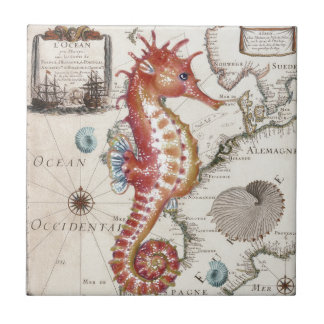 Seahorse Shabby Small Square Tile
