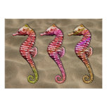Seahorses on the Sand