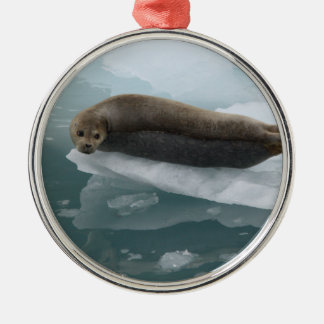 seal and ice christmas tree ornament