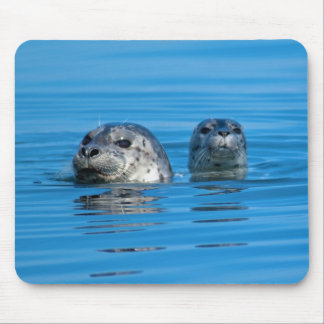 Seal and Pup Mousepad Mouse Pad