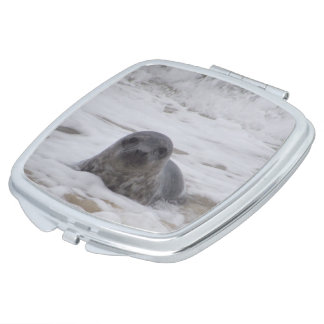 Seal - Animal Colour Photo Square Compact Mirror