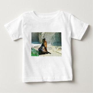 Seal at the zoo baby T-Shirt