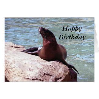 Seal Birthday Card