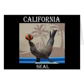 Seal (California Sea Lion) Greeting Cards