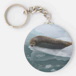 seal basic round button key ring