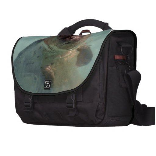 Seal Laptop Commuter Bag