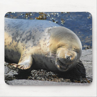 seal laughing, cute giggling seal, cute seal pup mouse mat