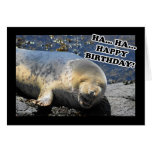 Seal Laughing Ha Ha Happy Birthday Greeting Card