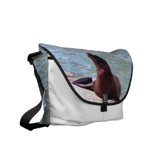 Seal Commuter Bag
