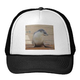 Seal pretty girl trucker hat