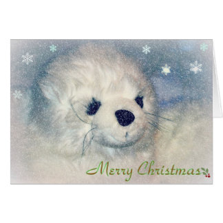 Seal Pup Christmas Card