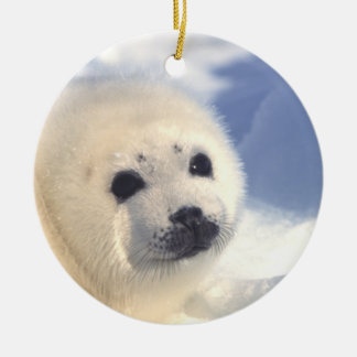 Seal Pup Face Ornament