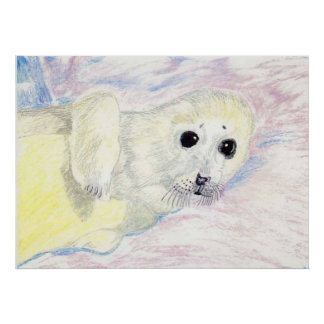 Seal Pup On The Ice Poster