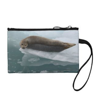 seal resting on ice coin wallets