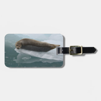 seal resting on ice luggage tag