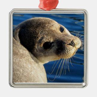 Seal Silver-Colored Square Decoration