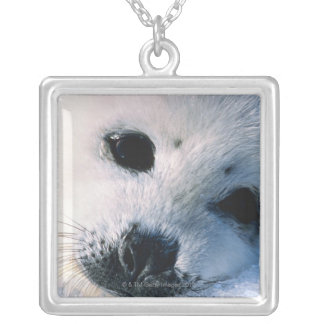 Seal Silver Plated Necklace