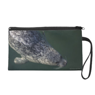 Seal swimming under the water 2 wristlet purses