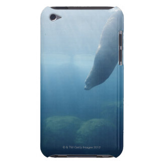 Seal swimming under the water iPod touch case
