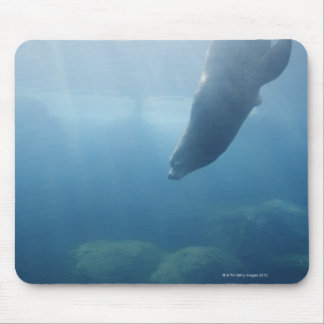 Seal swimming under the water mouse pad