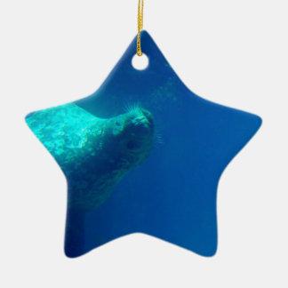 Seal Underwater Ornament
