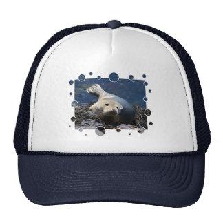 Seal, with bubbles design cap