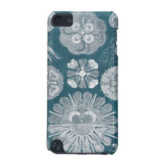 Sealife Blueprint IV iPod Touch 5G Cases