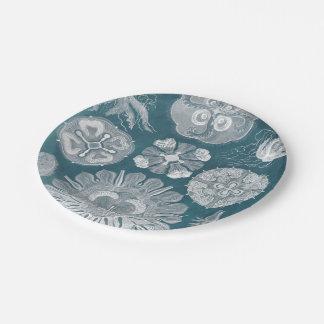 Sealife Blueprint IV Paper Plate